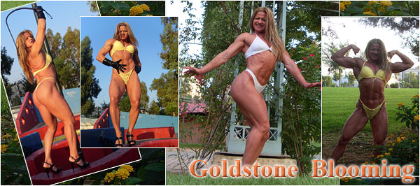 Madam Mysteria - Goldstone Blooming - Summer photogallery